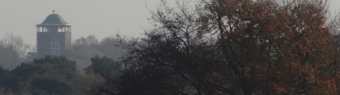 De Koepel boven de bomen footer 72dpi