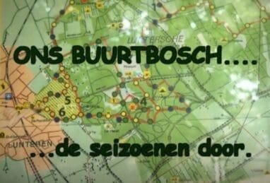 Het Luntersch Buurtbosch in alle seizoenen uit 2010.