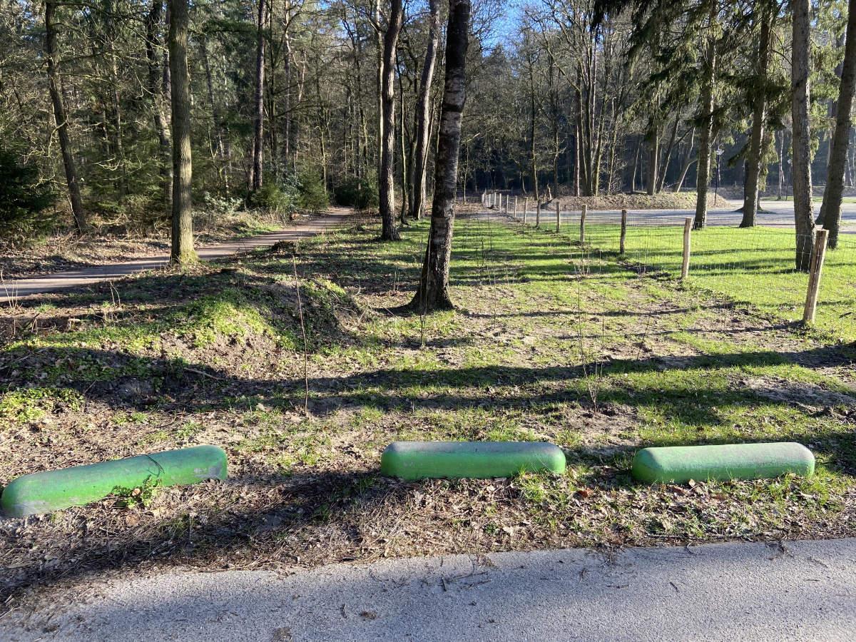 Aanplant bomen en struiken langs vd Hamlaan en Westhofflaan